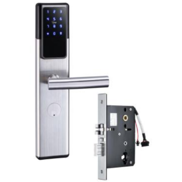 Zinc Bonding Panel door locks with ttlock