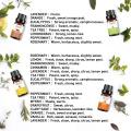 Unclin 8pcs Pure Essential Oil Set Humidifier Aromatherapy Lavender Peppermint Frankincense Eucalyptus Tea Tree Orange Massage