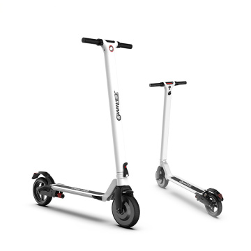 Electric Scooter E100 Razor
