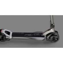 Widewheel 48V 1000W electric scooter