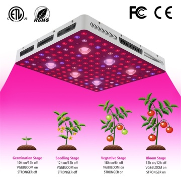 3000w Grow Lamp for Commercial Horticulture