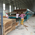 Plywood Dryer Machine Technology