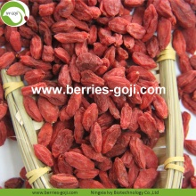 Factory Hot Sale Dried Tibet Goji Berry