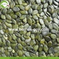 Hot Sale Dried GWS Pumpkin Kernels