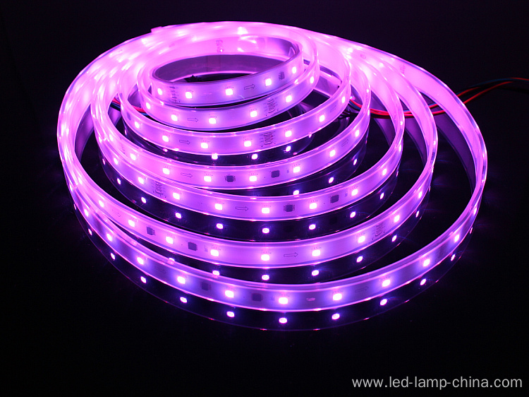 Programmable IC Constant Current LED Strip Light