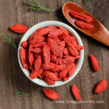 Bulk Wholesale Goji Berries From Ningxia 2018