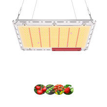 Quantum led board samsung LM301B 240w grow light