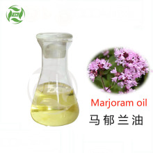 100% Pure Sweet Marjoram Essential Oil