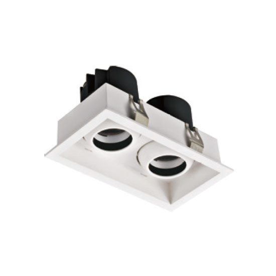 Commerical Rectangular 12W2 LED Downlight