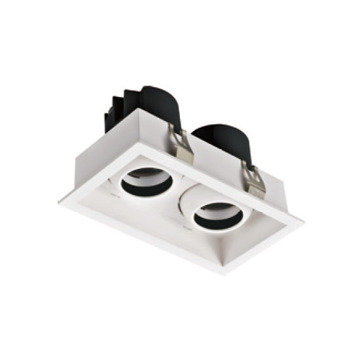 Commerical Rectangular 12W*2 LED Downlight
