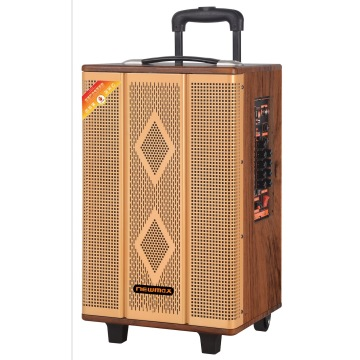 Trolley speaker DSP wooden case 15inch big woofer