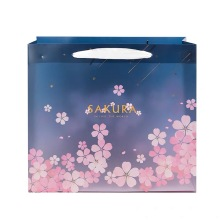 Shopping Paper Bag With Ribbon Handle