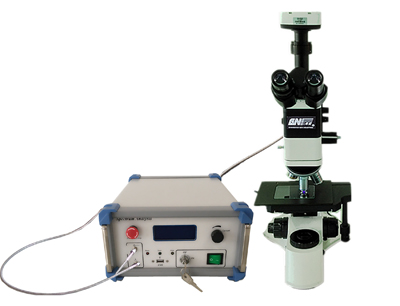 Micro Raman Spectrum Measurement System