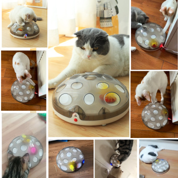 Cat Interactive Tos Pet Toy Smart Rechargeable Exercise Chaser Training Cat Teasing Toy with Feather Cat Toys Pet Accessories