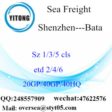 Shenzhen Port Sea Freight Shipping To Bata