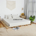 Ebay Hot Sale Earthing Bed Flat Sheets