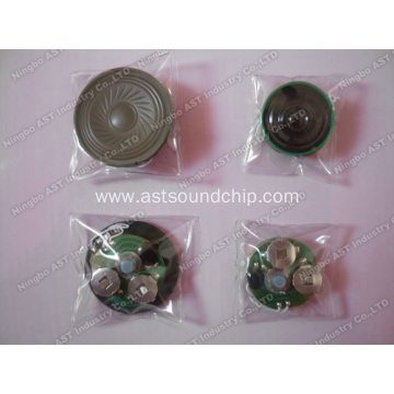 Waterproof Sound Module, Waterproof Module