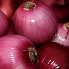 Red fresh onion from shandong