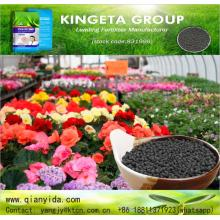 Slow Release Granular Organic biological fertilizer agro