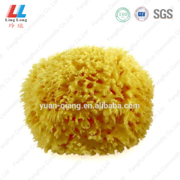 Seaweed yellow united bath sponge