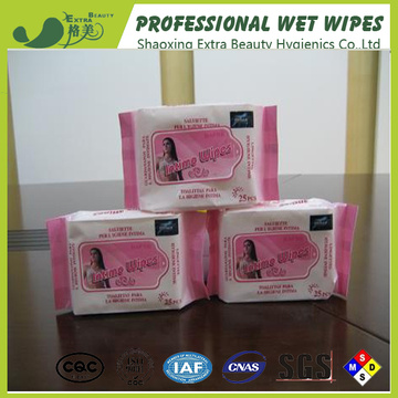 Production Line Personal Care Feminine Wet Tissues
