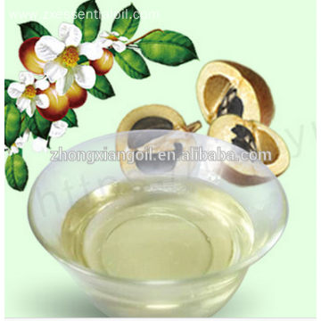 High Quality Camellia Seed Oil Factory Price