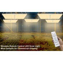 New 200Watt Square Hydroponic LED Grow Light