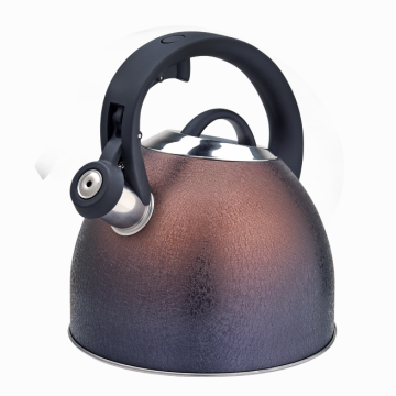 Best stainless steel stovetop whistling teapot kettle