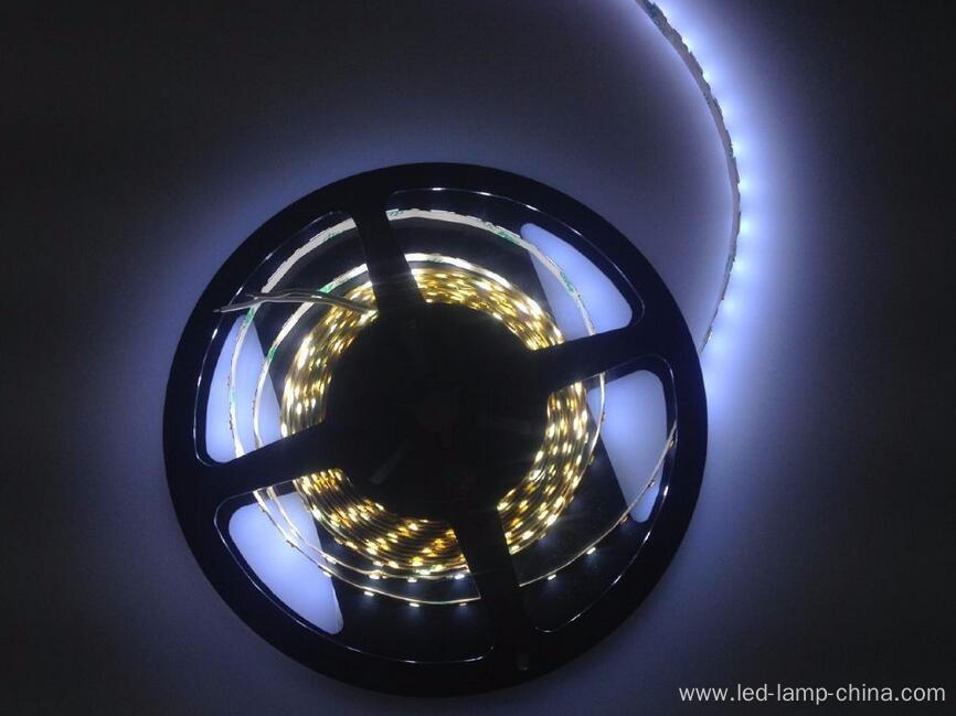 Good price LED tape S shape SMD2835
