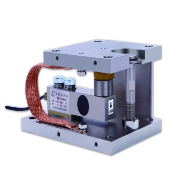 Static Type Weighing Module
