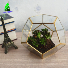 Glass geometric terrarium decorations