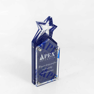 Custom acrylic plastic star trophy design