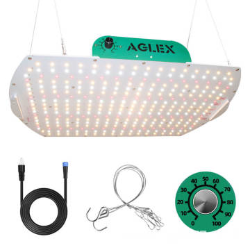 Orchid LED Grow Light For Greenhouse Growing