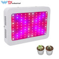 Best Led Grow Lights For Indoor Plants 1000w