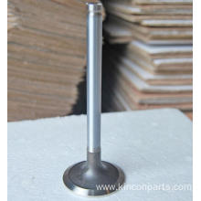 Engine Valves  TPK-100