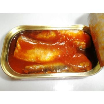 Canned Sardine In Tomato Sauce With Hot Chili