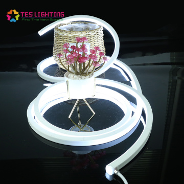 Tunable white Waterproof LED Neon Light