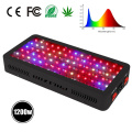 Sistemas hidropónicos Invernadoiro de interiores LED Grow Lights