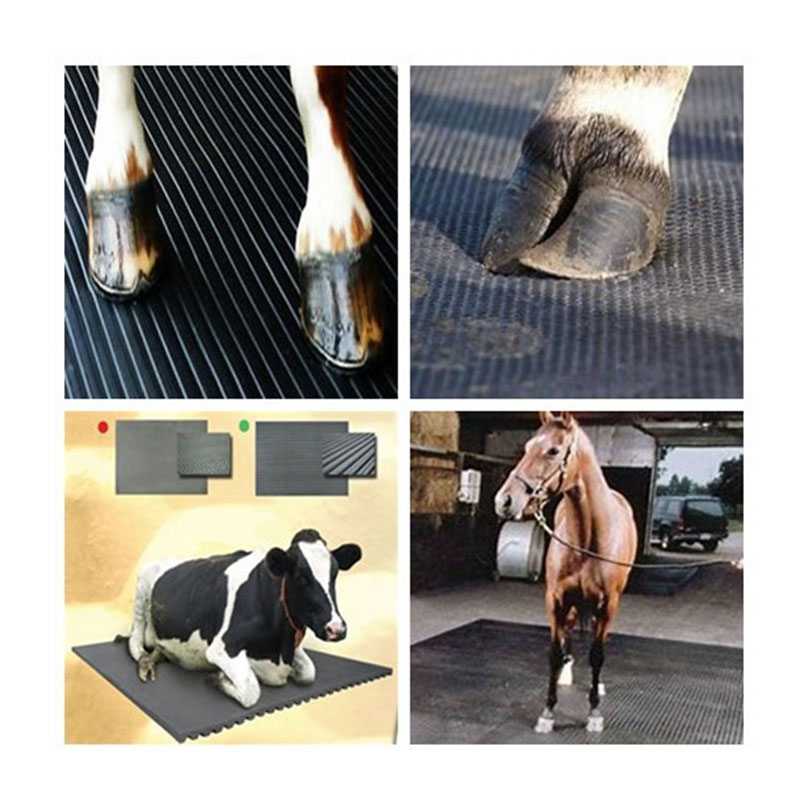 Stall Mat Flooring for cow