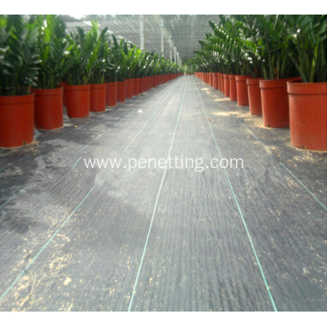 agricultural ground cover netting