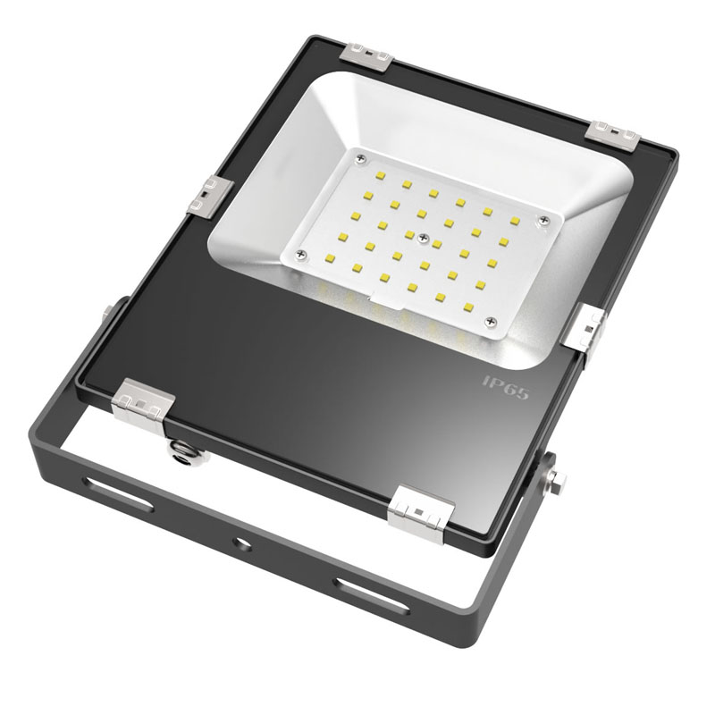 Flood Light with Plug