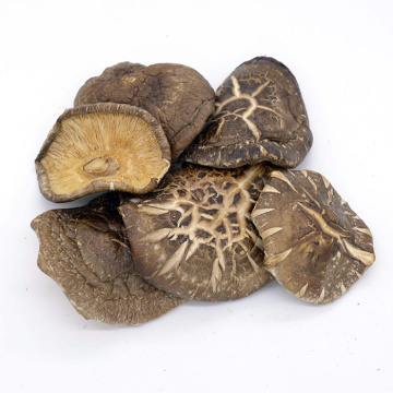 Best Dried Shiitake Mushrooms