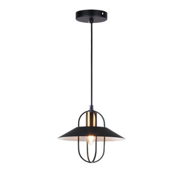 Lamp Pendant Modern Hanging Light