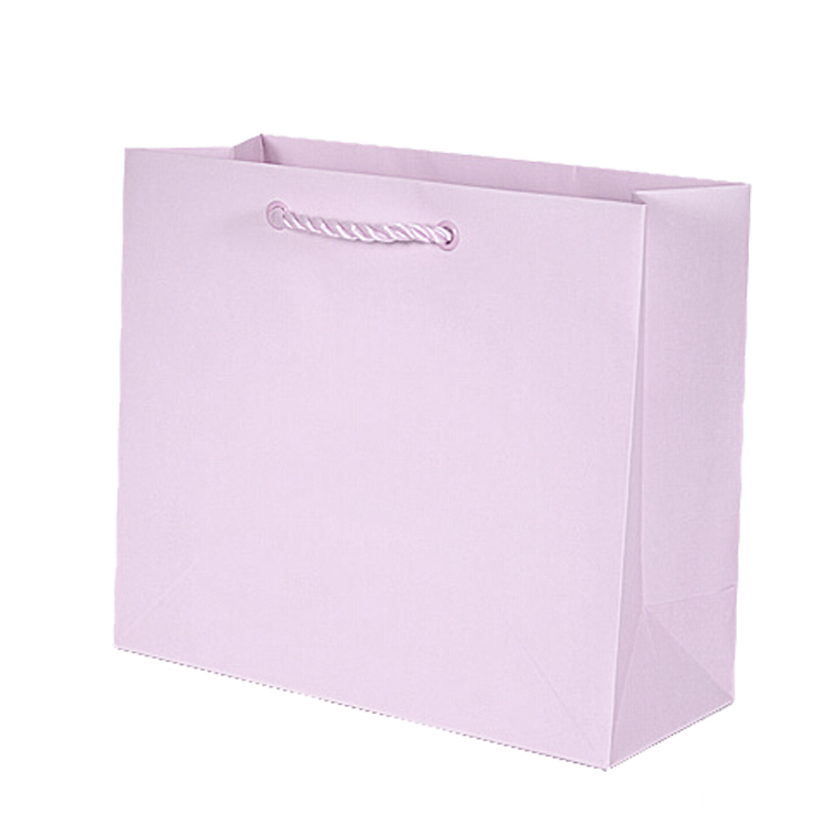 Famous Brand Gift Custom Printed Shopping Paper Bag