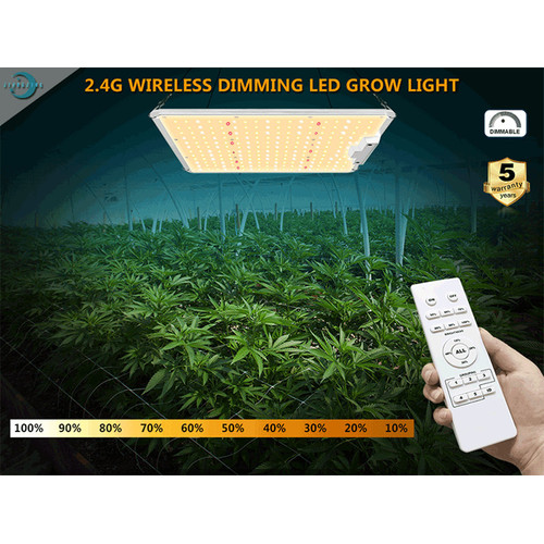 Vertical Garden Lighting 100W LED Plant Growth Lamp