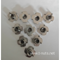 4P Stainless steel Furniture Nuts