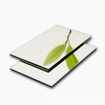 Silver Mirror Aluminum Composite Panel