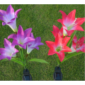 Simulation Lily Lawn Lights