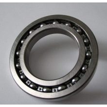 Single Row Deep Groove Ball Bearing (6060)