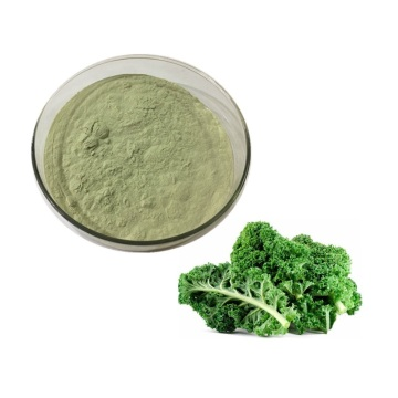 Food Ingredients kale juice powder
